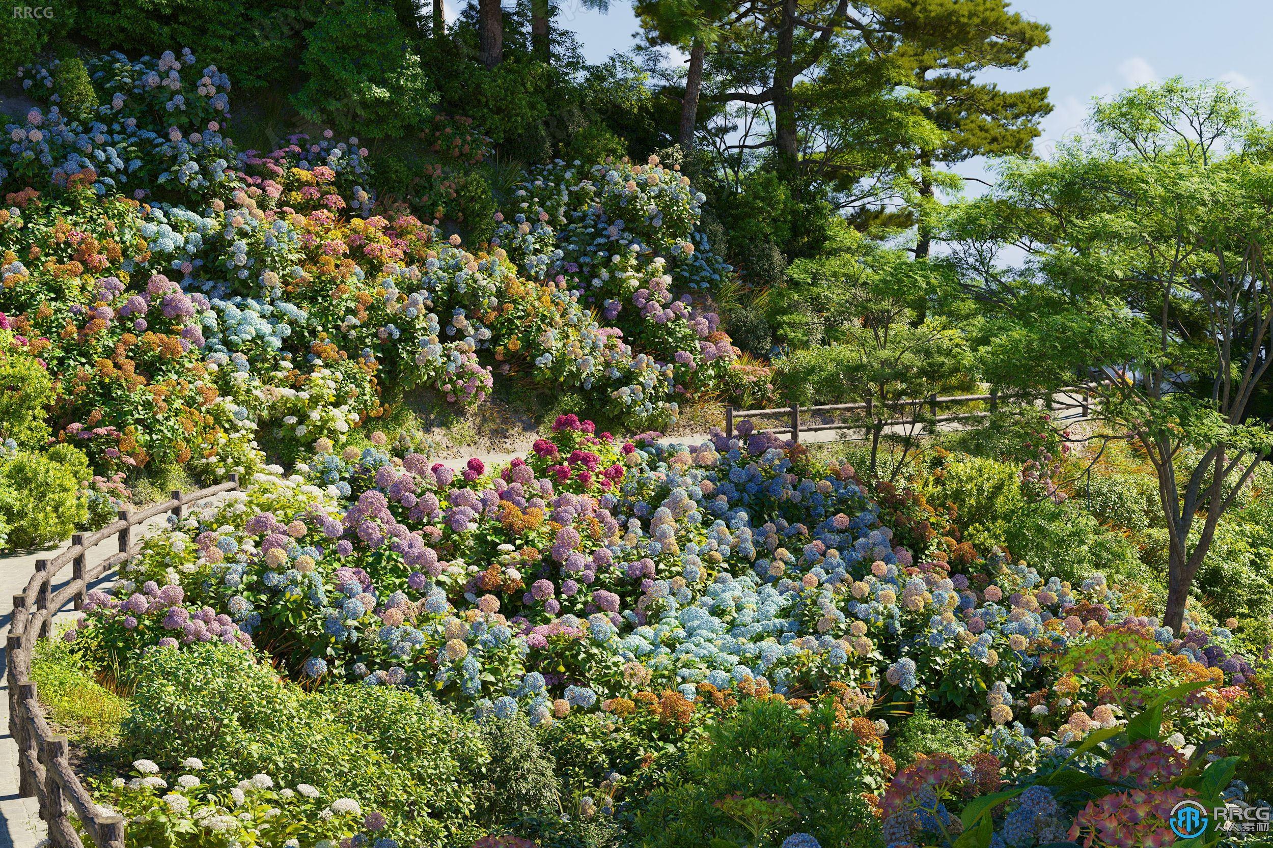 高质量绣球花麦穗花等草木植物3D模型合集