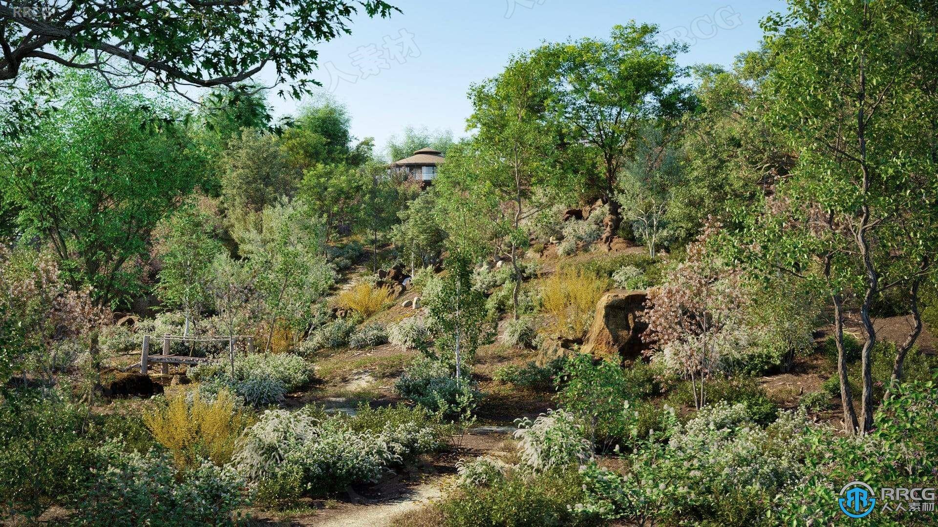 15种鹅掌楸桤木等温带地区草树木灌木高质量植物3D模型合集