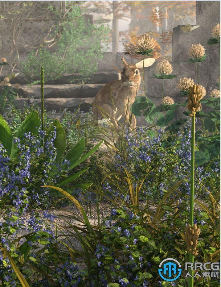 自然庭院植被花卉草坪花坛3D模型合集