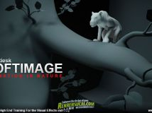 《Softimage自然动画制作教程》cmiVFX Softimage Animation In Nature