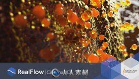 RealFlow流体动力学模拟C4D插件V2.0.1版 NEXTLIMIT REALFLOW CINEMA 4D 2.0.1 WIN MAC