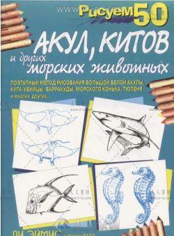 50个海洋生物画法参考素材