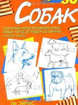 现代50种狗的绘画方法参考素材