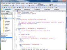 《代码编辑器》(ES-Computing EditPlus)v3.50.241[压缩包]