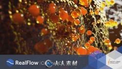 RealFlow流体动力学模拟C4D插件V2.5.2版